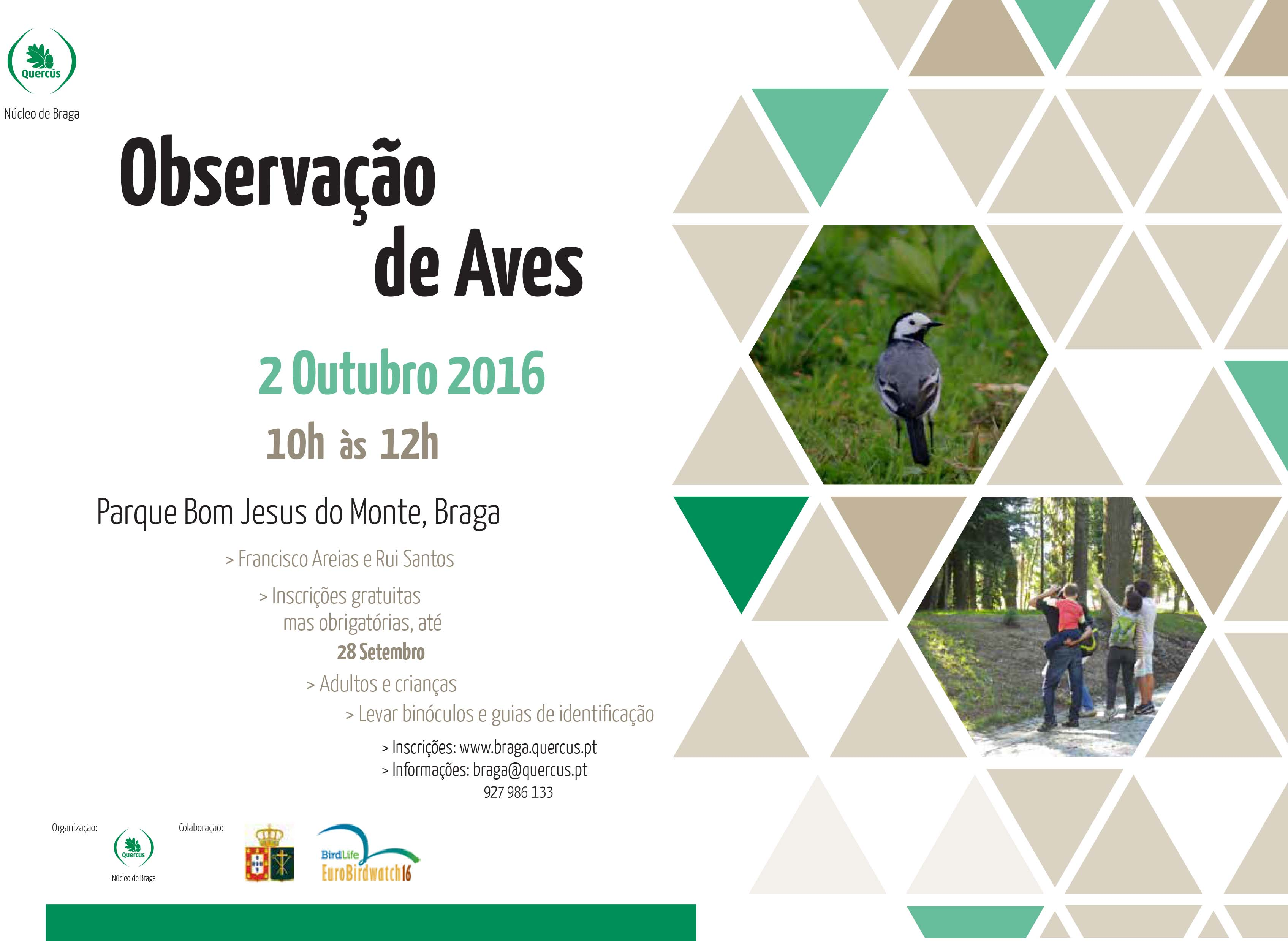 Cartaz Observacao aves out2016 copiar