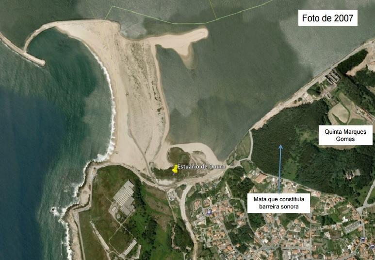 Plantas Reserva Natural Local Estuario Douro.1