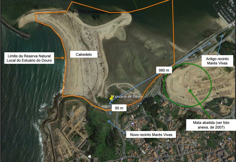 Plantas Reserva Natural Local Estuario Douro.2