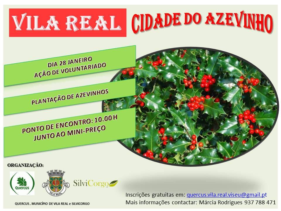 cartaz plantacao azevinhos