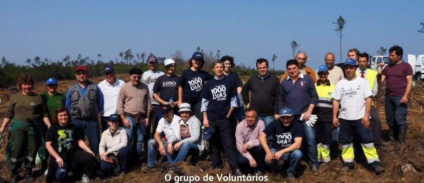 voluntarios buçaco