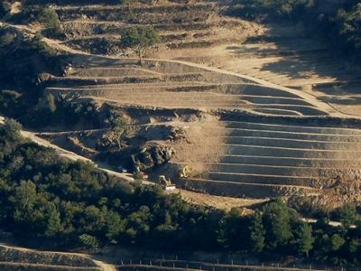Alto Douro Floresta1