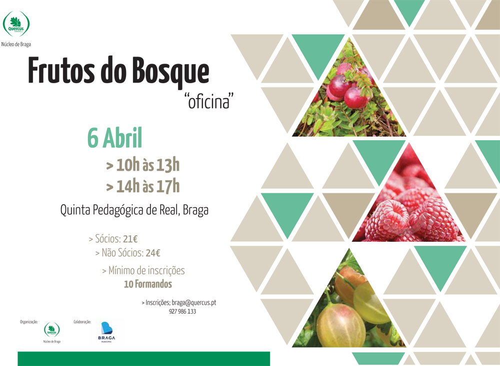 Cartaz baixa- Oficina de Frutos do Bosque - Abril 2013