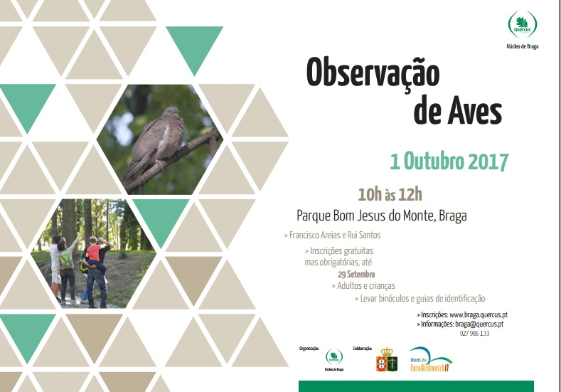 obs. aves 2017
