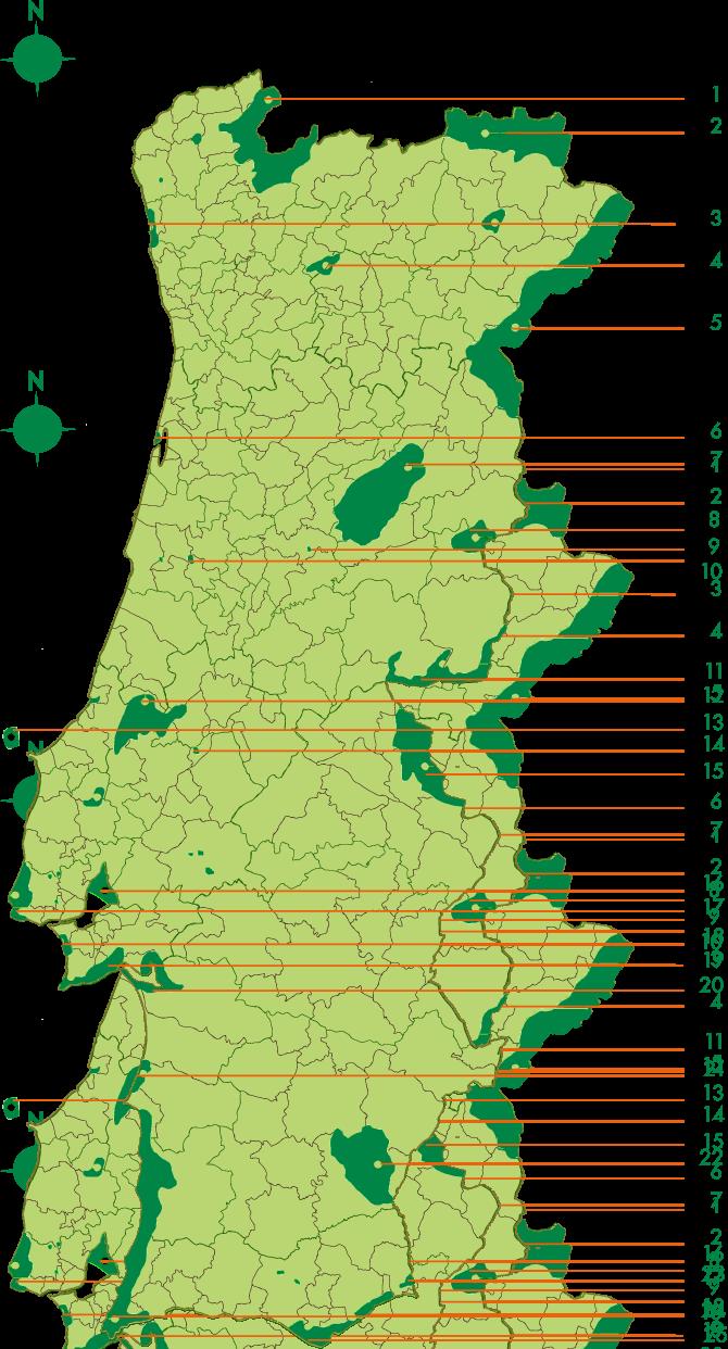 portugalAP laranja